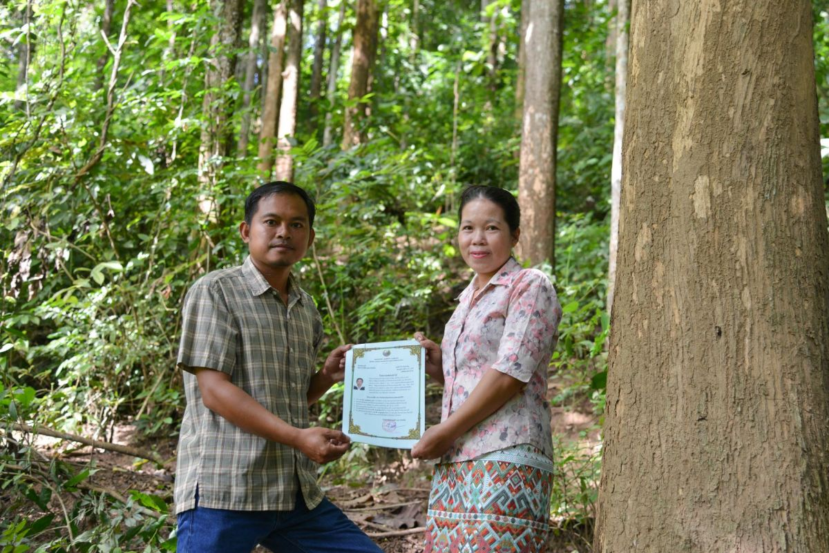 Securing land and forest tenure rights