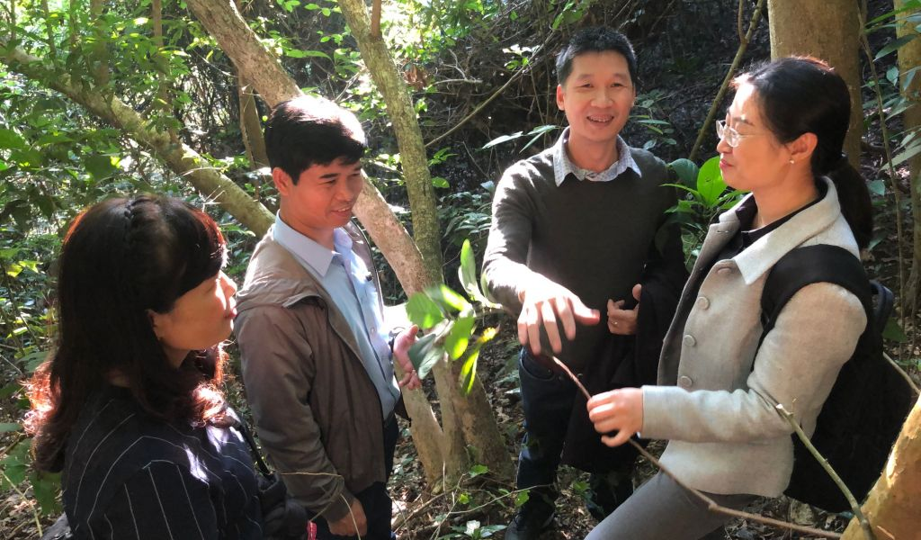 Visit a model of community forest management in Dien Chau district