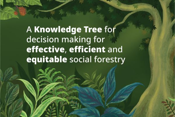 "A tree in a forest, ""A Knowledge Tree for decision making for effective, efficient and equitable social forestry"""