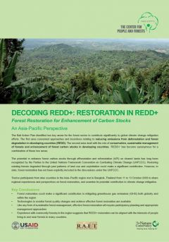Decoding REDD: Forest Restoration in REDD+