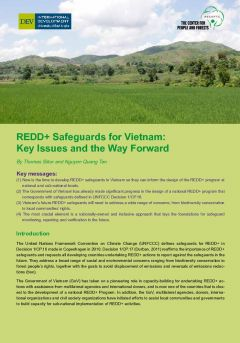 REDD+ Safeguards for Vietnam: Key Issues and the Way Forward
