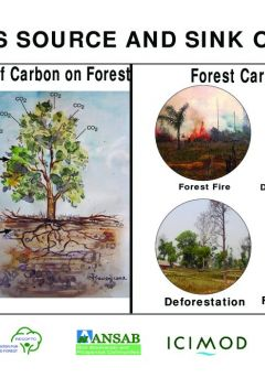 Posters on climate change and REDD+